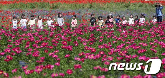 작약꽃 찾은 어린이들