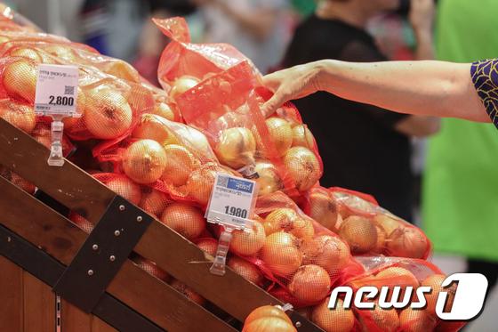 양파ㆍ마늘 생산량 159만t...역대 최고치