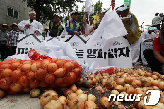 청와대 앞에서 양파에 상복 덮는 농민들