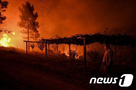 [사진] 주택가로 접근하는 포르투갈 산불