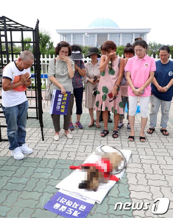 눈물 흘리는 동불보호단체 케어 회원들