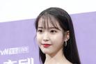 """아이유 측 """"악플러 고소 후 조사 진행 중…지속적 법적대응"""""""