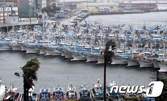 태풍 피해 항구에 정박한 배들