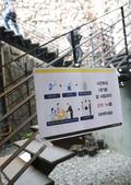 '부암동 갤러리에서 사전투표를'