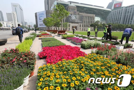 화려한 꽃 수놓은 서울광장
