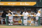 '코치 없이 경기'… 표류하는 한화, 끝없는 추락 속 14연패 위기