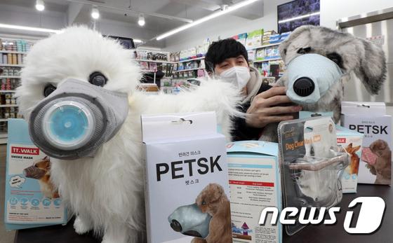 \'반려동물도 마스크 착용해요\'