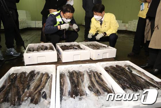 김강립 식약처장, 일본산 수입 수산물 방사능 검사
