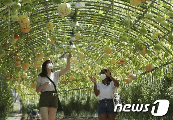 한국의 가을 분위기에 흠뻑 빠진 외국인들