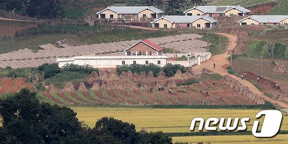 가을걷이로 분주한 북한 주민들